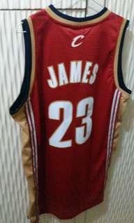 NBA 騎士 LBJ 正版 波衫 swingman