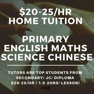 $20-25/hr Tuition | Primary Home Tutors | English Maths Mathematics Science Higher Chinese Art Tamil Malay | Looking for PSLE Tuition Teacher |  Home Tuition Primary | Home Tuition Lesson | One to One Tuition