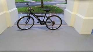 Concord Bike