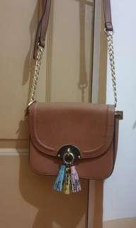 ALDO Chained Crossbody Bag