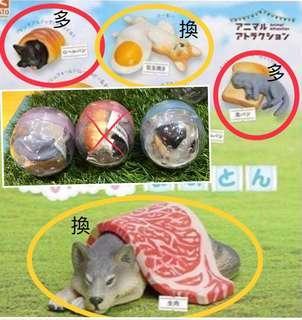 多肉動物扭蛋🥚