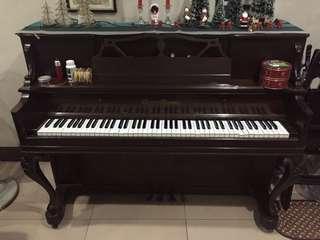 Piano - Grotrian Steinweg