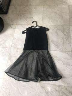 Black Dress with Mesh Skirt