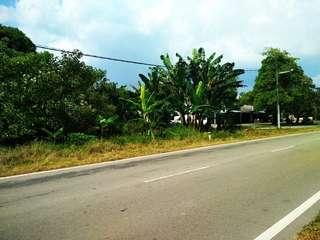 Benut, Johor FreeHold