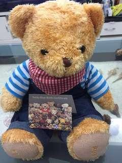 🚚 泰迪熊