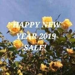20% OFF NEW YEAR SALE 💛