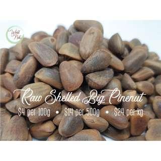 Raw Shelled Big Pine Nut