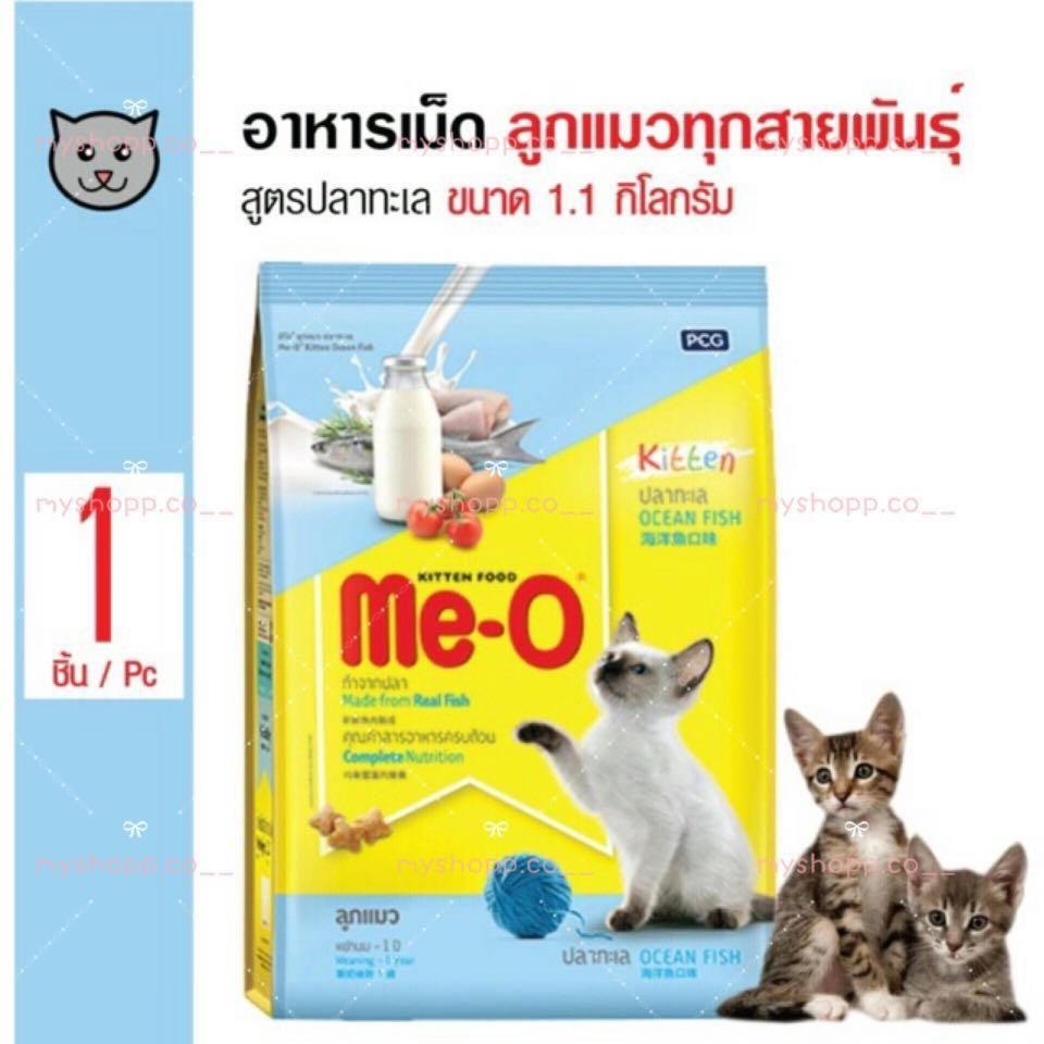 Makanan Kucing Cepat Gemuk Kitten Me O Kitten Short Hair Pet