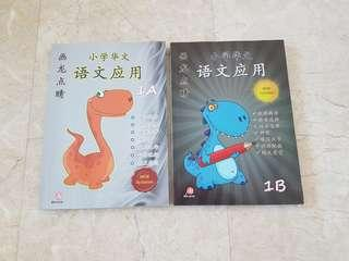 Primary 1 Chinese Assessment Books Marlinsons Bundle of 2