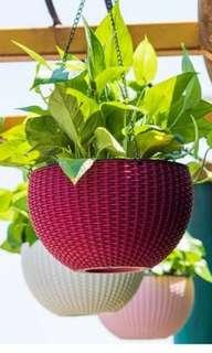 Hanging pots (21 cm) for plants.