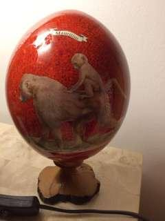 Ostrich egg from south africa or mauritius