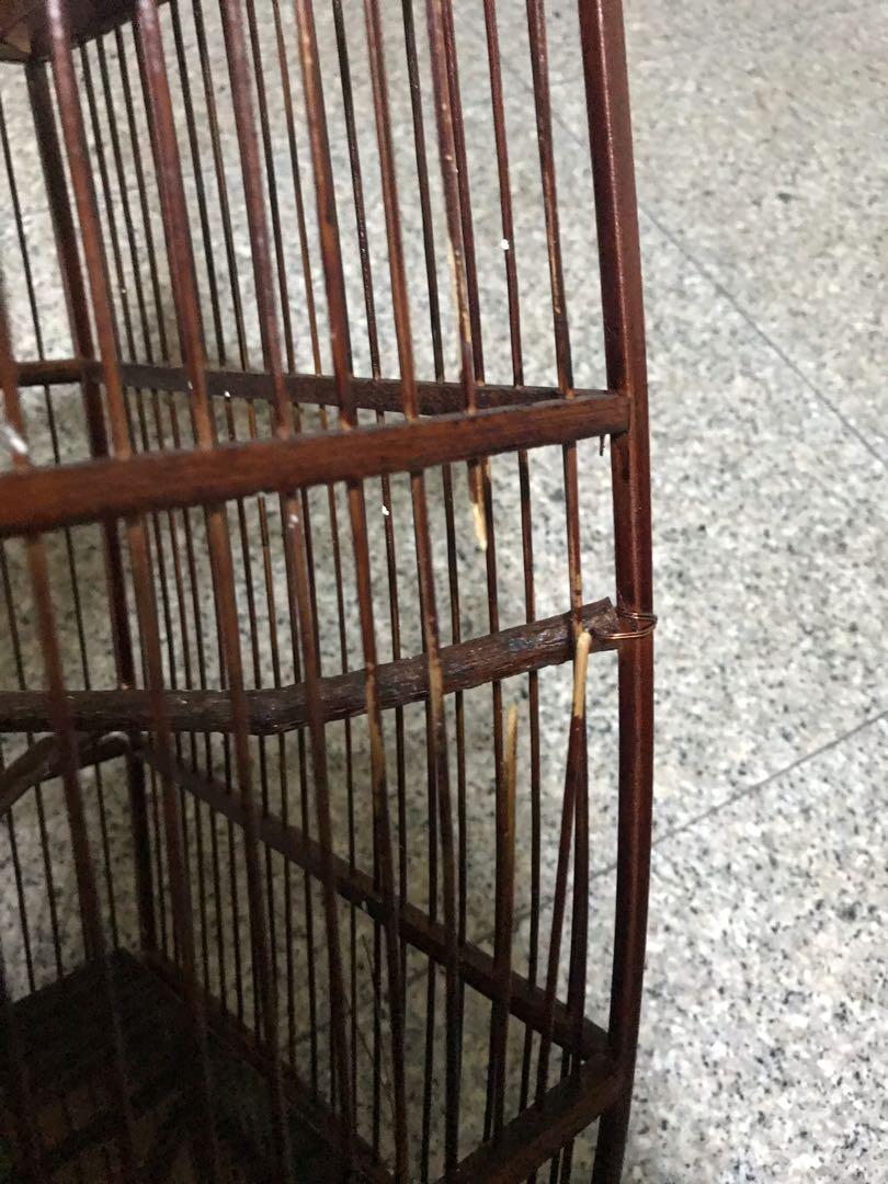 Used bird cage