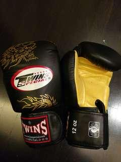 Twins Muay Thai Boxing Gloves 12.oz
