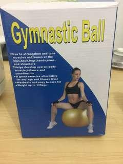 Gymnastic Ball  original price ₱700 now on sale