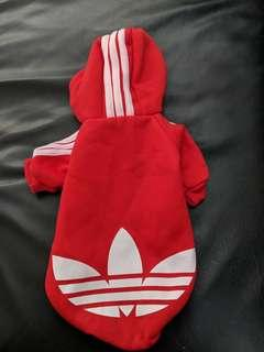 Dog hoodie for toy breed.
