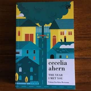 The year i met you (cecilia ahern)