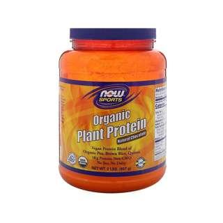 🚚 Now Foods, Organic Plant Protein, Natural Chocolate, 2 lbs (907 g)