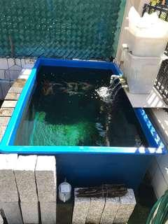 Fish pond fiber tank