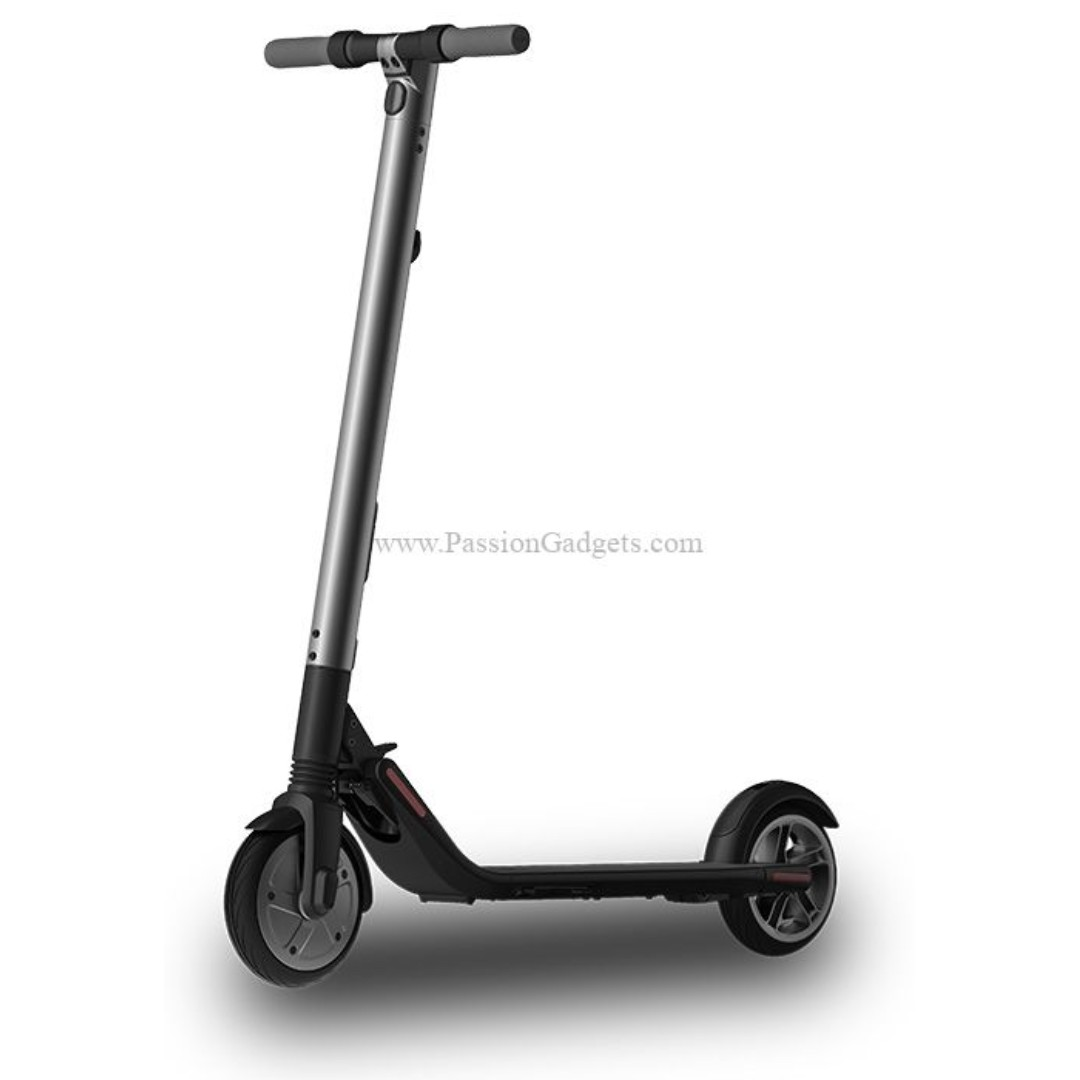 Segway Ninebot Es2 Electric Scooter [UL2272 Certified