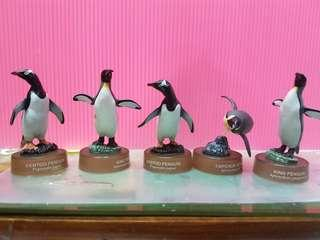 🚚 (盒玩) 國 王 企 鵝
