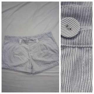 WA1031 Royal Party Pin Stripes Plus Size Shorts for Women - size 16
