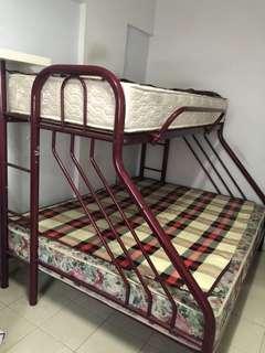 Metal Bed Frame and king mattress