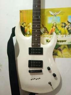 Gwl washburn limited edition Electric Guitar