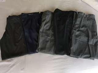 7pc x Formal Pant