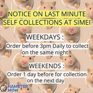 🐹 Notice on Last Min Self Collections 🐹