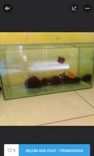 Akuarium 40 cm