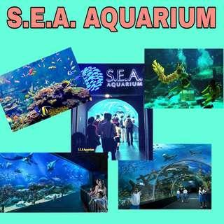 S.E.A. Aquarium Sea