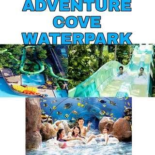 Adventure Cove Waterpark ACW