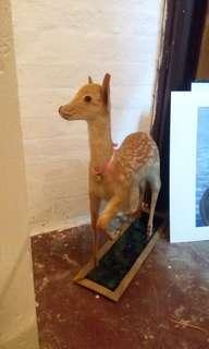 珍藏 小鹿 標本 骨頭