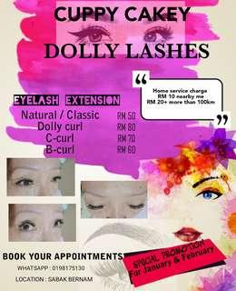 CUPPY CAKEY DOLLY LASHES
