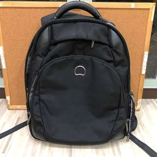 Delsey Laptop Computer Backpack