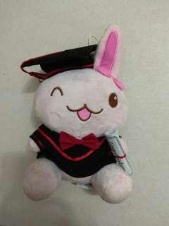 Rabbit in Graduation Gown