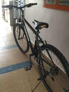 Common C660 Super Sport Bike