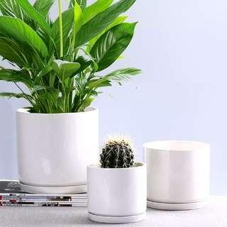 Ceramic Round Pot - Glossy White
