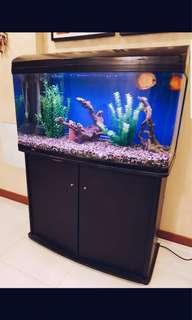 Fishtank & cabinet (complete with accessories & supplies)