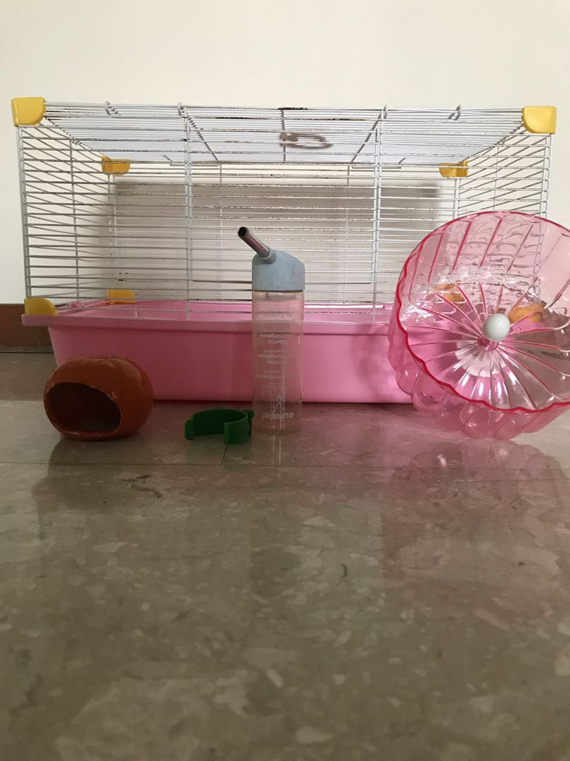 49e1825d09 Hamster cage with house water bottle wheel, Pet Supplies, For Small  Animals, Pet Accessories on Carousell
