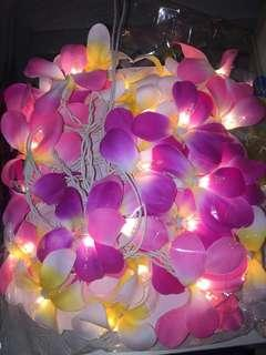 Decorative flower lights