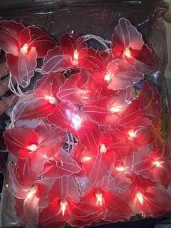 Pretty decorative lights
