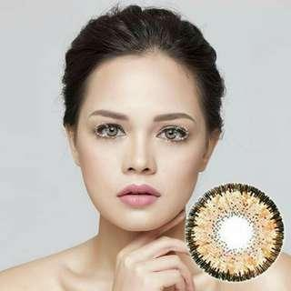 Softlens dreamcolor maki brown 2.25