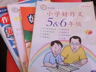 Chinese Composition Books 作文