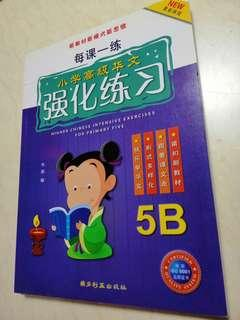 Primary 5 assessment book