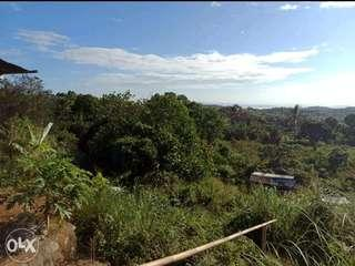 60 Hectares Pililla Rizal Lot