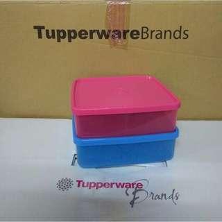 Tupperware Large Square 2pcs Set