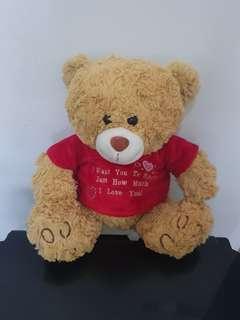 Love Tshirt Teddy Bear