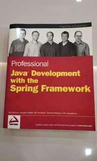 Professional Java Development with Spring framework