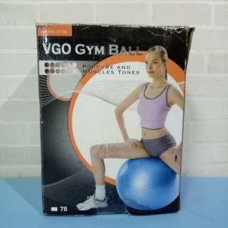 VGO Gym Ball ( while stocks last)